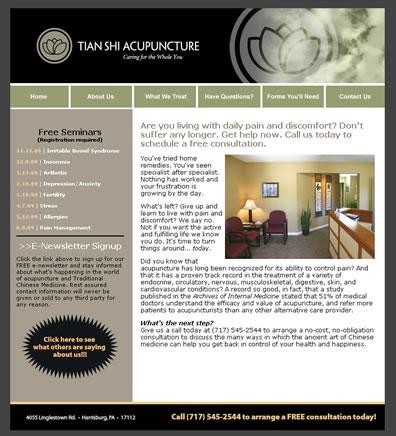 Tian Shi Acupuncture web design